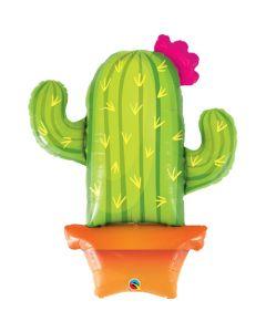 Kaktus muotofoliopallo